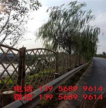 邵阳绥宁花池围挡花池栅栏色彩丰富图片