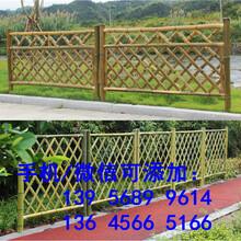 郴州安仁室外花圃花园围栏竹子竹篱笆信息图片