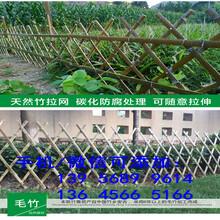 衢州常山pvc护栏绿化带护栏免邮,量大包送图片