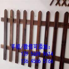 杭州临安竹篱笆装饰花圃小花园护栏木桩竹桩质量保证图片