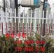点军区pvc塑钢栏杆GGpvc隔离护栏pvc隔离围栏###批发价