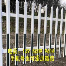 信州区pvc草坪栅栏pvc草坪栏杆要快速供货的厂家图片
