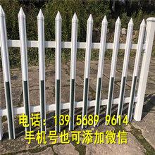 绿化环保安装简便范县草坪栅栏草坪栏杆图片