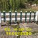 新建县绿化带隔离栏塑料栏杆厂家直销