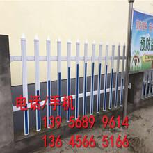 平潭县户外花园护栏紫竹帘竹竿围墙装饰结构简单体积小图片