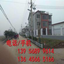 30,40,50公分浠水县pvc小区围墙护栏图片