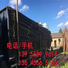 市场前景冷水江市花园公园装饰围栏护栏花坛草坪篱笆图片