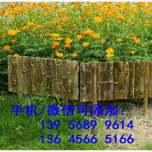 色彩丰富浠水县花池护栏花池围栏图片