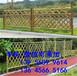 福州市绿化带隔离栏塑料栏杆价格透明