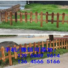 寶應縣竹籬笆柵欄圍欄竹籬笆竹竿竹片按需定制圖片