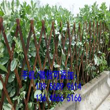 送立柱?含运费?兴业县PVC工厂围栏别墅花园栏杆图片