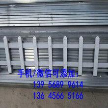 广东省绿化栏杆塑钢pvc护栏1.5米围栏已发货啦图片