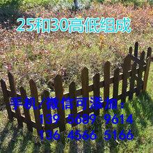 庆元县绿化草坪护栏pvc塑钢草坪护栏墨绿色图片