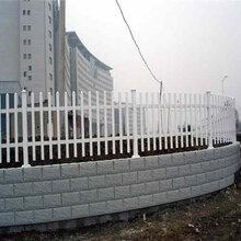 浙江衢州PVC塑钢护栏草坪围栏多少钱一米