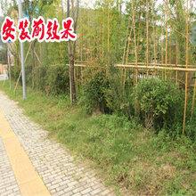 浙江衢州pvc围墙栅栏pvc围墙栏杆哪家好