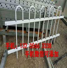 湖州南浔pvc塑钢护栏围栏栅栏花栏户外图片