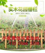 岑溪装饰塑料花植物墙面客厅阳台厂家使用寿命多长?图片