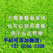 资讯:炉霍县防腐木栅栏户外伸缩拉网竹子篱价格这么低图片