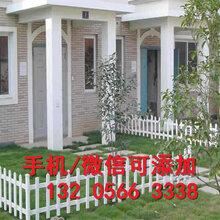 河北邯郸绿化带花园栏杆规格齐全(中闻资讯)图片