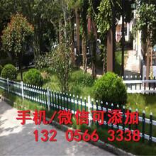 福建福州庭院装饰庭院护栏推荐图片