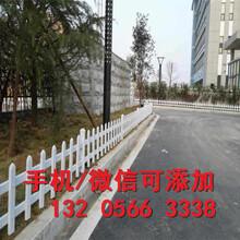 安徽淮北pvc绿化栅栏放心优质(中闻资讯)图片