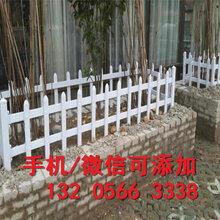 甘肃武威装饰花园围栏室外实力厂家(中闻资讯)图片