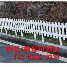 大同天镇县绿化草坪护栏pvc塑钢草坪护栏图片