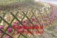 淮北烈山區PVC塑鋼圍墻護欄學校圍欄出售