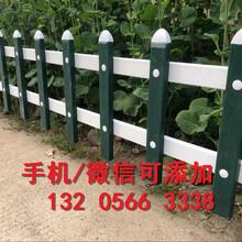 山东聊城户外菜园毛竹杆子供应图片