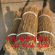 西安灞桥pvc塑钢护栏pvc塑钢围栏图片