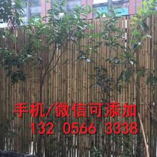洛阳瀍河回族伸缩竹篱笆户外室内隔断花园草坪装饰图片