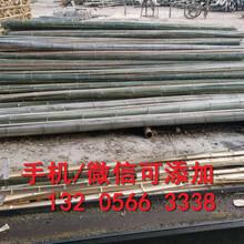 辽宁盘锦pvc围墙围栏辽宁盘锦竹篱笆栅栏的价格图片