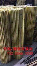 九江星子县学校幼儿园围栏图片