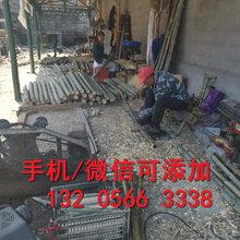 安徽蚌埠学校幼儿园围栏、安徽蚌埠厂家现货直销图片