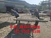 福建福州塑钢围栏厂福建福州价格定制定做