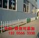 福建福州花园木栅栏塑钢草坪护栏规格齐全