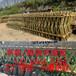 咸宁通城竹篱笆围墙施工围挡专业生产厂家(中闻资讯)