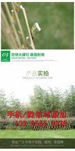 黄石西塞山竹子篱笆竹栅栏厂房护栏批发市场(中闻资讯)
