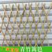福建福州篱笆花园栏杆竹篱笆竹子护栏