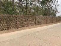 浙江杭州菜园围墙护栏户外室内隔断竹篱笆竹子护栏图片5