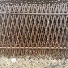 广东惠州竹子护栏学校医院护栏竹篱笆竹子护栏图片