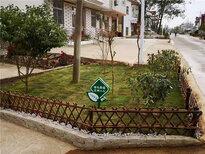 遼寧營口伸縮戶外田園白色木樁竹籬笆竹子護欄圖片2