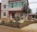 贵州遵义竹篱笆庭院庭院插地木栅栏竹篱笆竹子护栏图片