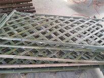貴州銅仁防腐竹子花園木樁竹籬笆竹子護欄圖片4