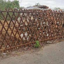 天津汉沽竹篱笆栅栏防腐防蛀竹篱笆竹篱笆竹子护栏图片
