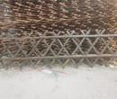 福建泉州花坛菜园围栏安全绝缘隔离栏竹篱笆竹子护栏图片