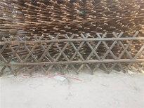 貴州銅仁防腐竹子花園木樁竹籬笆竹子護欄圖片1