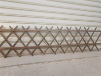浙江杭州菜园围墙护栏户外室内隔断竹篱笆竹子护栏图片3