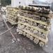浙江云和竹竿護欄木質圍欄竹籬笆竹子護欄