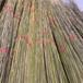 莆田碳化木围栏公园木围栏竹篱笆竹子护栏